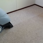 Damel Carpet shampoo machine